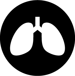 Lungs icon for smoking
